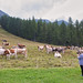 Madesimo Valley
