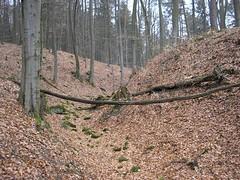 Burg Gutenfels - Halsgraben