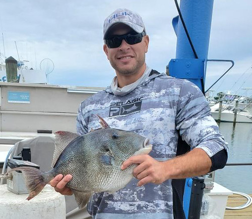 Photo of man holding a gray triggerfish