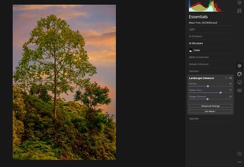 Screenshot of Luminar 4's Landscape Enhancer settings