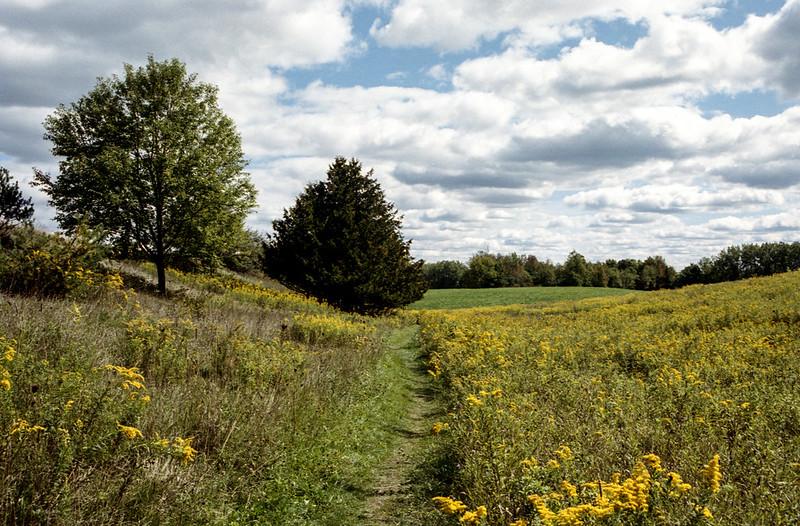 Bruce Trail Through the Fields