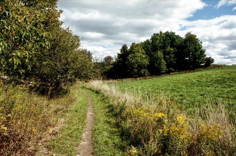 Bruce Trail through the Field