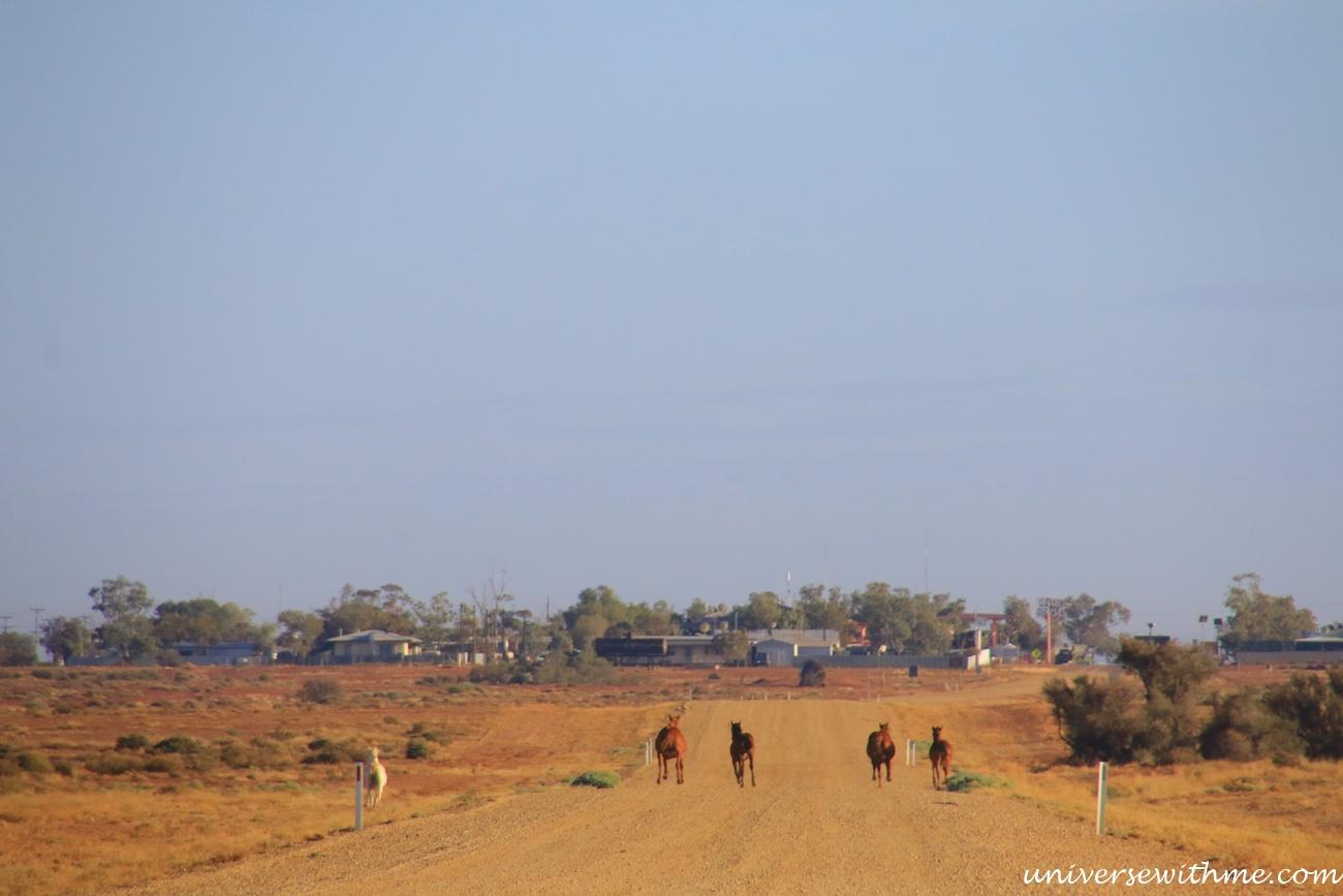 Australia Outback_048