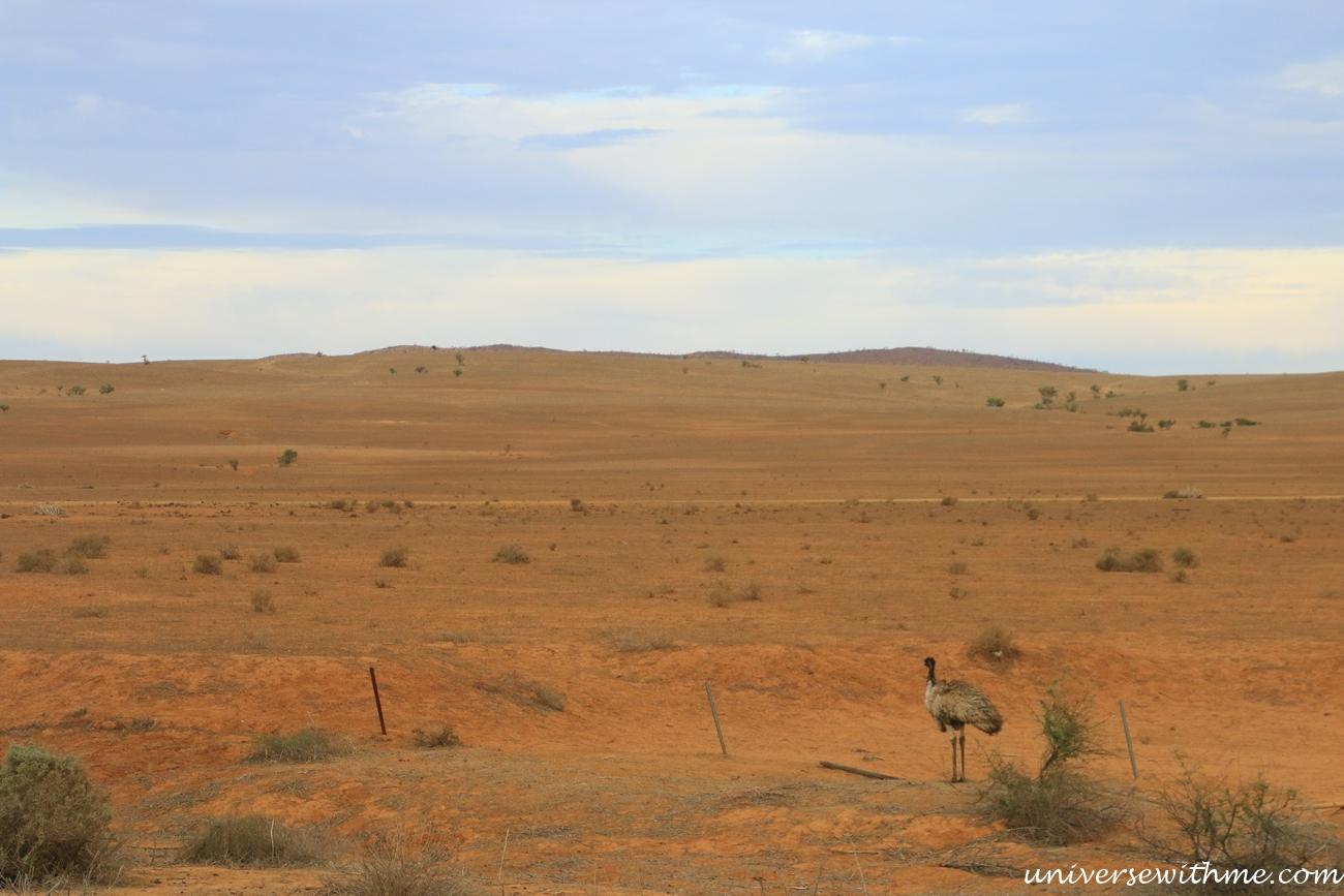 Australia Outback_012