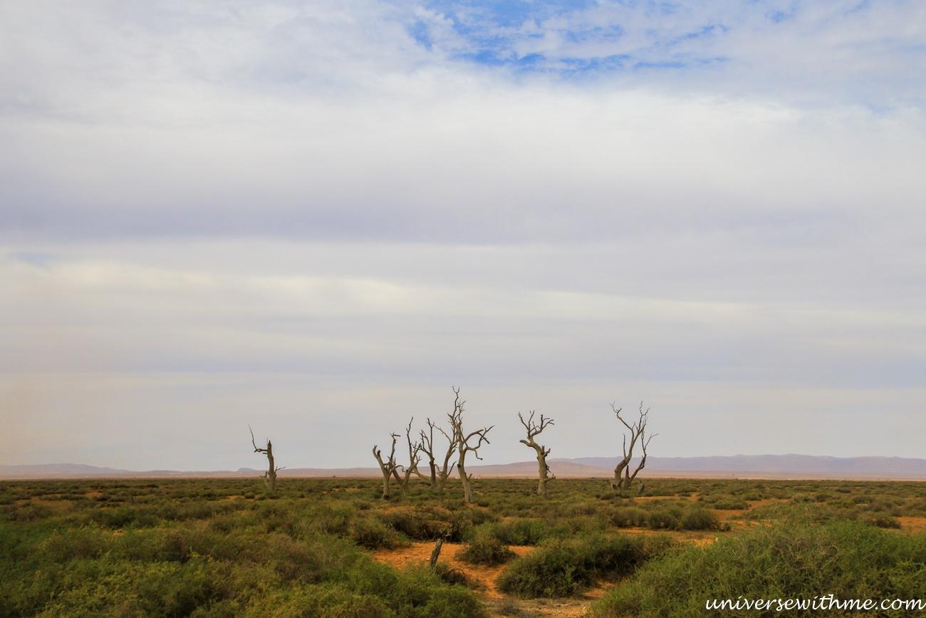 Australia Outback_011