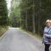 Madesimo Forest