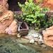 "<p><a href=""https://www.flickr.com/people/theverynk/"">Disney Dan</a> posted a photo:</p>  <p><a href=""https://www.flickr.com/photos/theverynk/50398859192/"" title=""Magic Kingdom fun""><img src=""https://live.staticflickr.com/65535/50398859192_46d5ef8516_m.jpg"" width=""160"" height=""240"" alt=""Magic Kingdom fun"" /></a></p>  <p>Walt Disney World. <br /> October 2018. <br /> <br /> <a href=""http://www.charactercentral.net"" rel=""noreferrer nofollow"">www.charactercentral.net</a></p>"