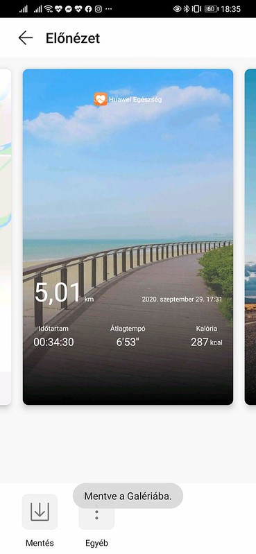 Screenshot_20200929_183505_com.huawei.health