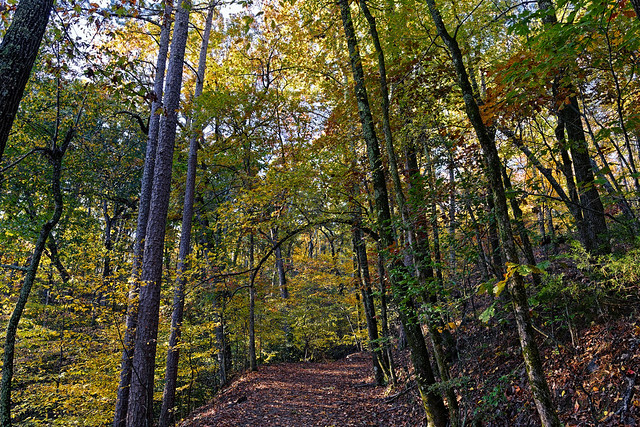 An Early Autumn Morning Hike to Explore Hot Springs National Park