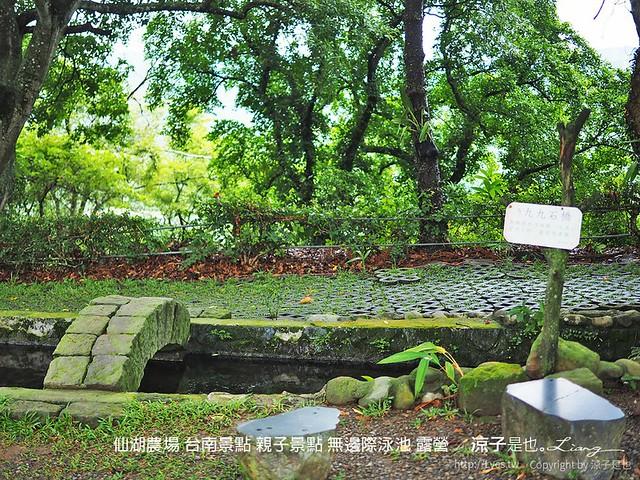 仙湖農場 台南景點 親子景點 無邊際泳池 露營