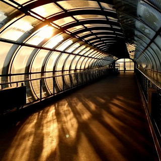 Morning Tube | by Globalista1