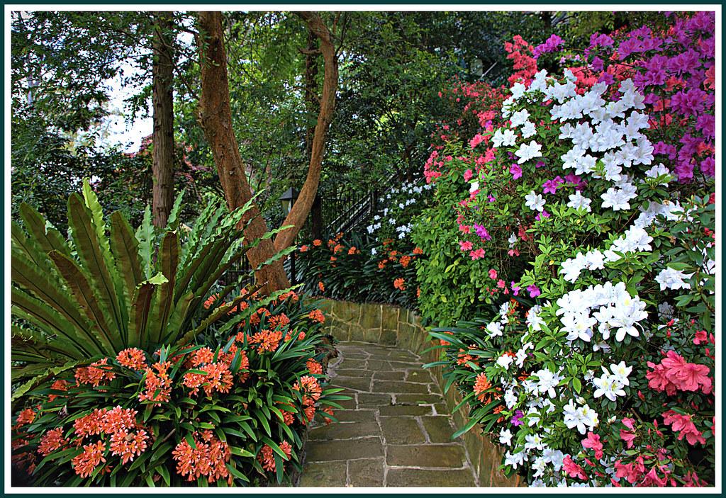 Lisgar Gardens, Hornsby