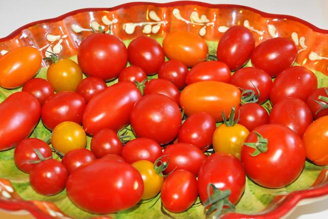 Herbst 2020 ... Kleine bunte Tomaten und Tomatenschnittchen ... Brigitte Stolle