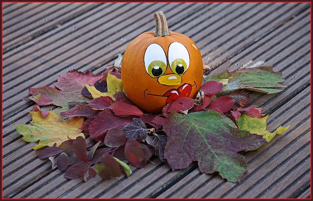 🍁🌰🍄💖🍂🌰🍂💖🍄🌰🍁 Herbstzeit Kürbiszeit ...