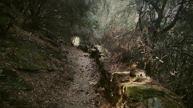 Remaking the Trail in Chalares Canyon 03