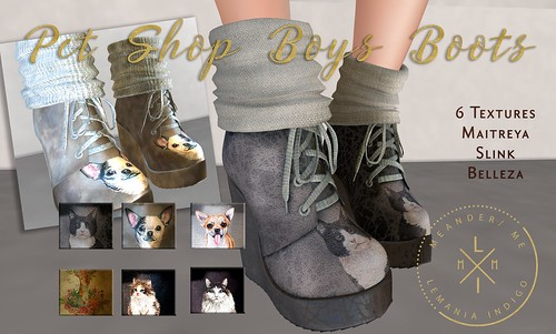 Pet Shop Boy Booties - Pet Shop Hunt