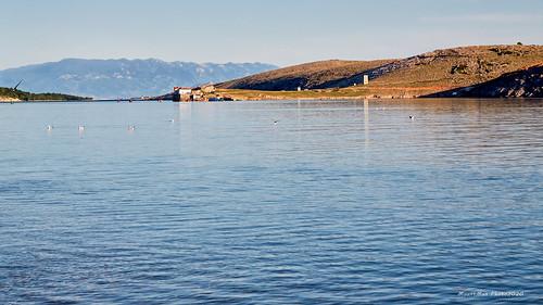 črišnjeva uvala kraljevica primorje primorskogoranska croatia landscape seascape krajolik more sea galebovi seagulls flickrunitedaward