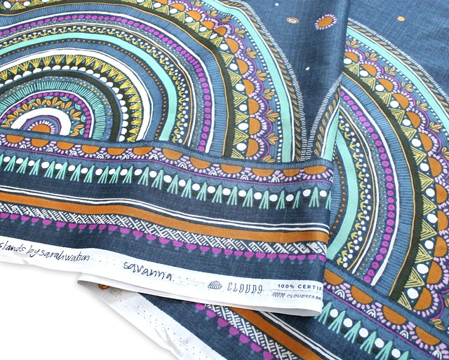 Cloud9 Fabrics Grasslands 226978 Savannah Lawn Border Print