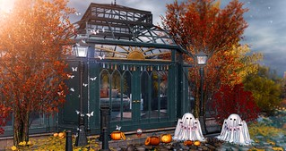 Look 1407 - Trick or Treat