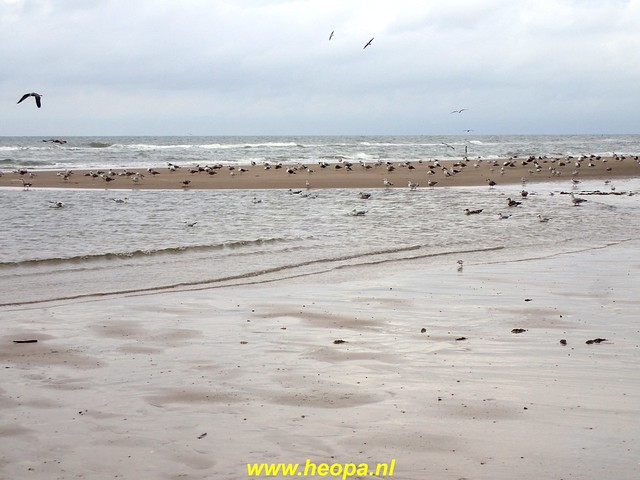 2020-09-30 Egmond - Bergen   aan Zee 28 km (44)