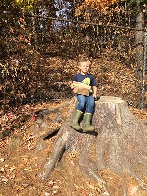 the big stump