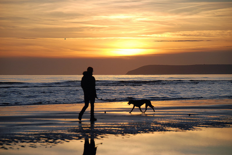 One Man and His Dog Taking a DeLIGHT in Bexhill Beach!