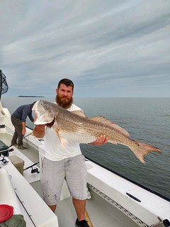 Photo of man on a boat holding a huge red drum