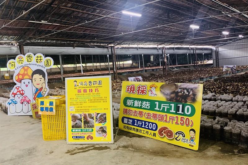 新社阿亮香菇園