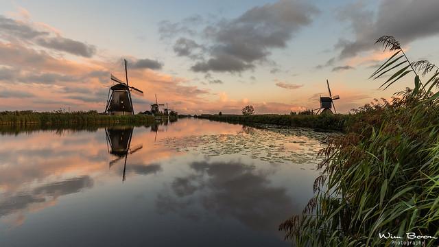 After the Rain in Kinderdijk