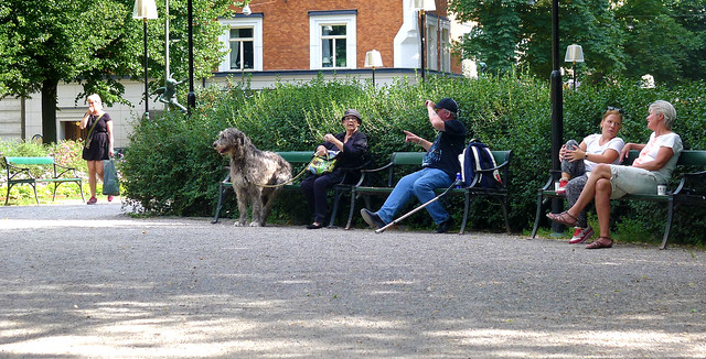 A lady is resting on a bench with her dog