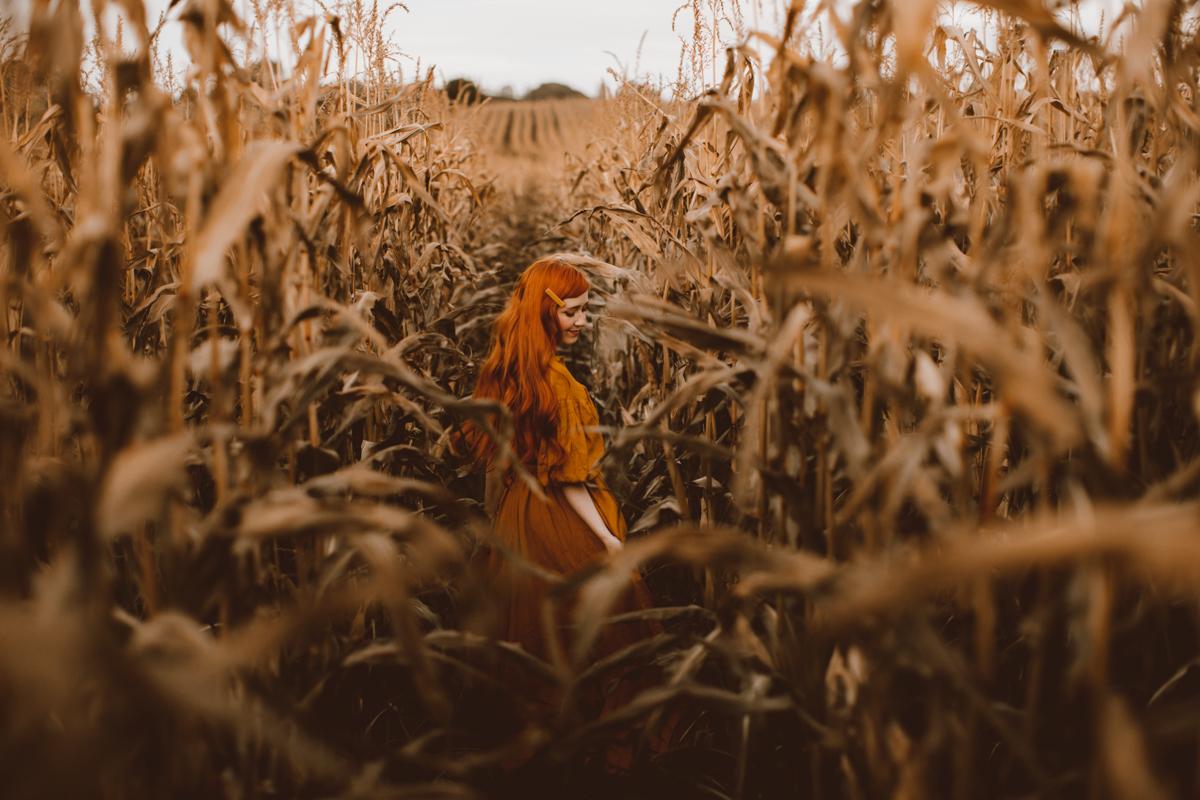 cornfield-18