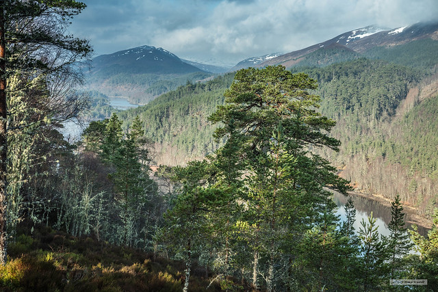 Glen of Glens. Legendary and iconic Glen Affric, North-West Highlands.