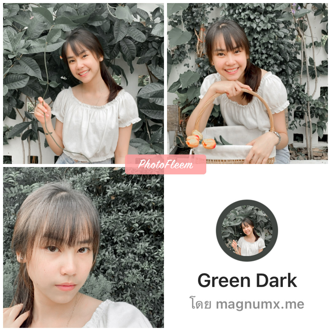 review filter ig Green Dark