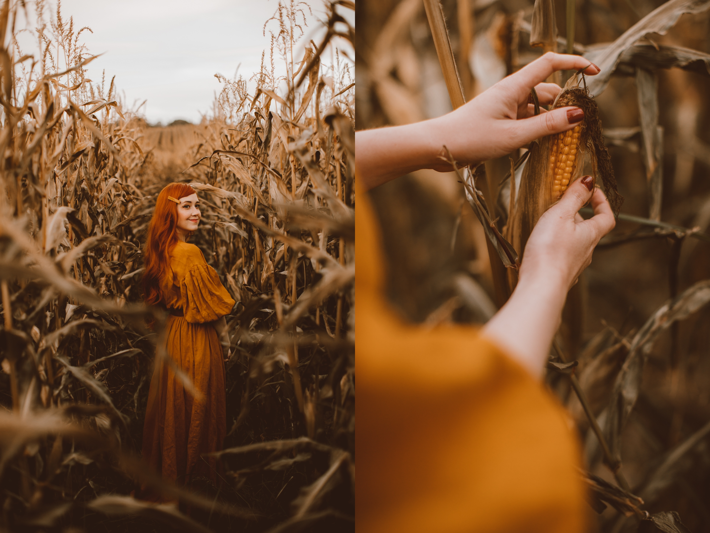 cornfield-19-side