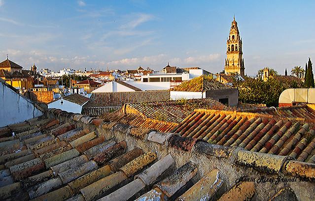 Terracotta Tile Roofs - N1