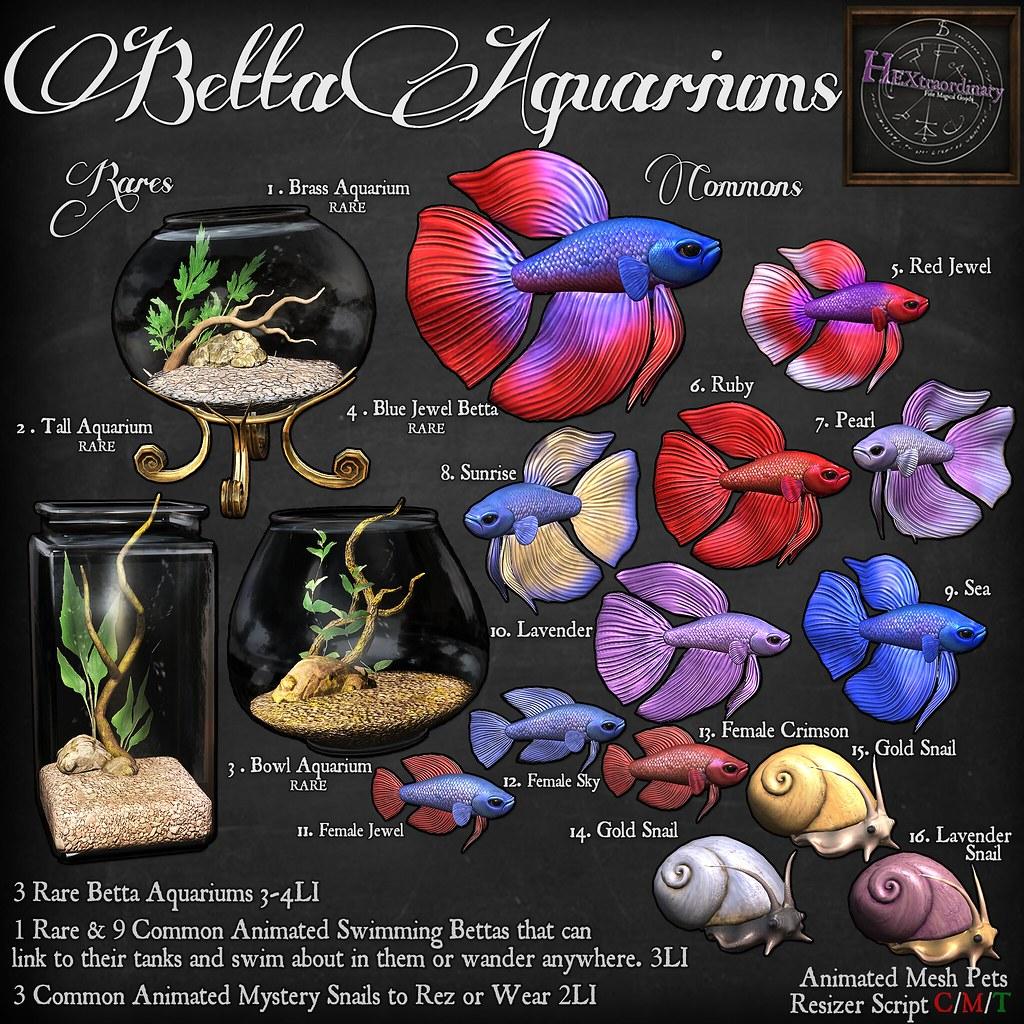HEXtraordinary – Betta Aquariums  – Gotta Getcha Gacha –