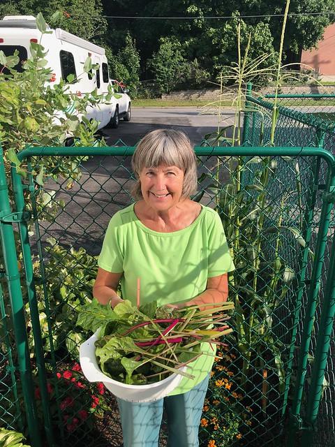 Carleton Place - Lindas harvest