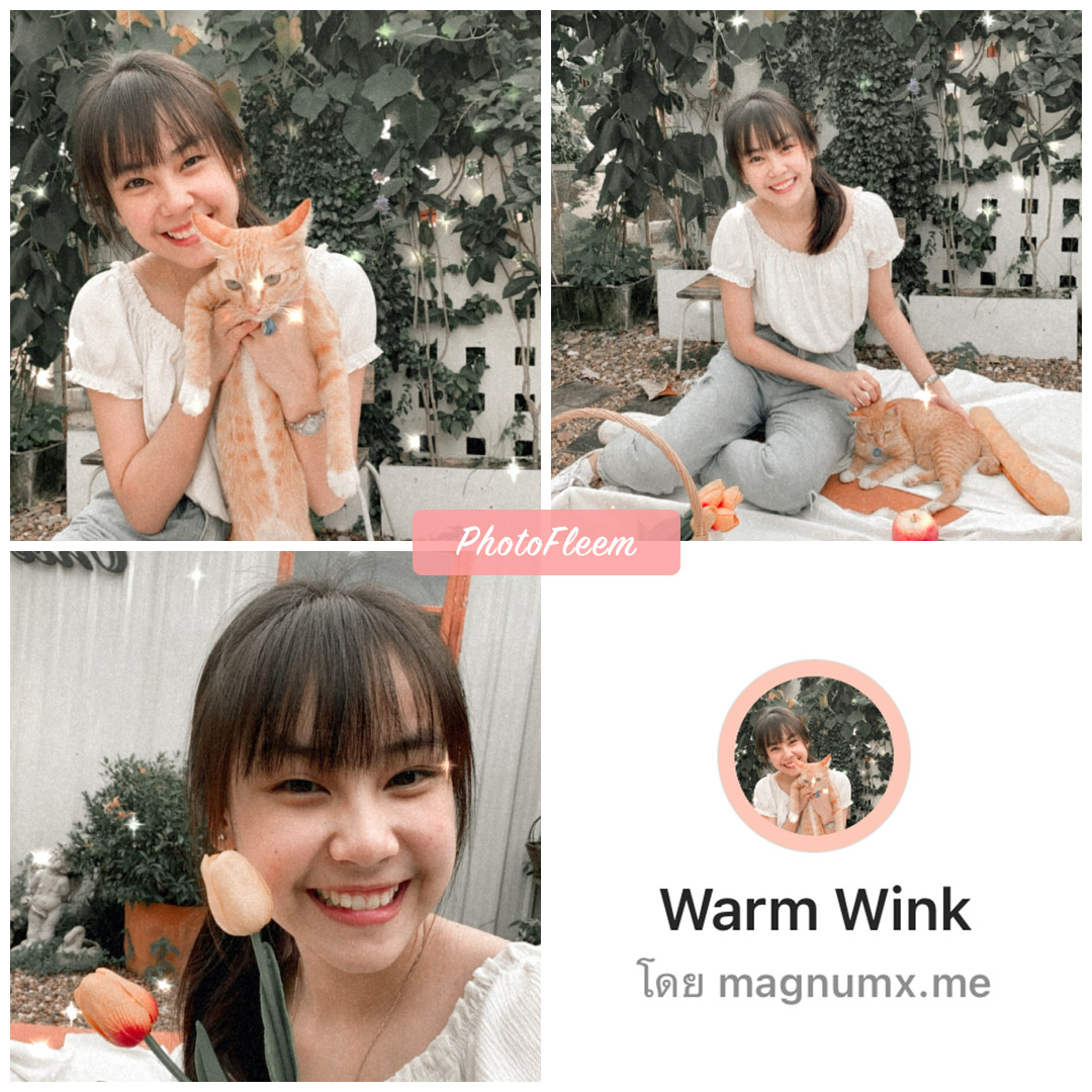 review IG filter Warm Wink  for Cafe