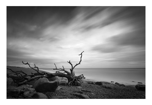 pettlevel longexposure blackwhite beach coast sand landscape