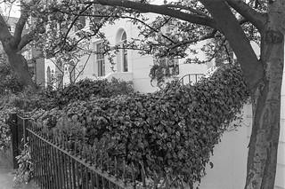 Selwood Terrace, South Kensington, Kensington & Chelsea, 1988 88-4r-61-positive_2400