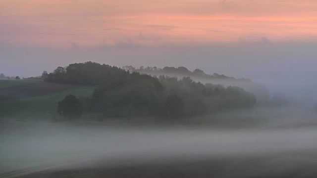*First October morning in the Wittlich Valley*