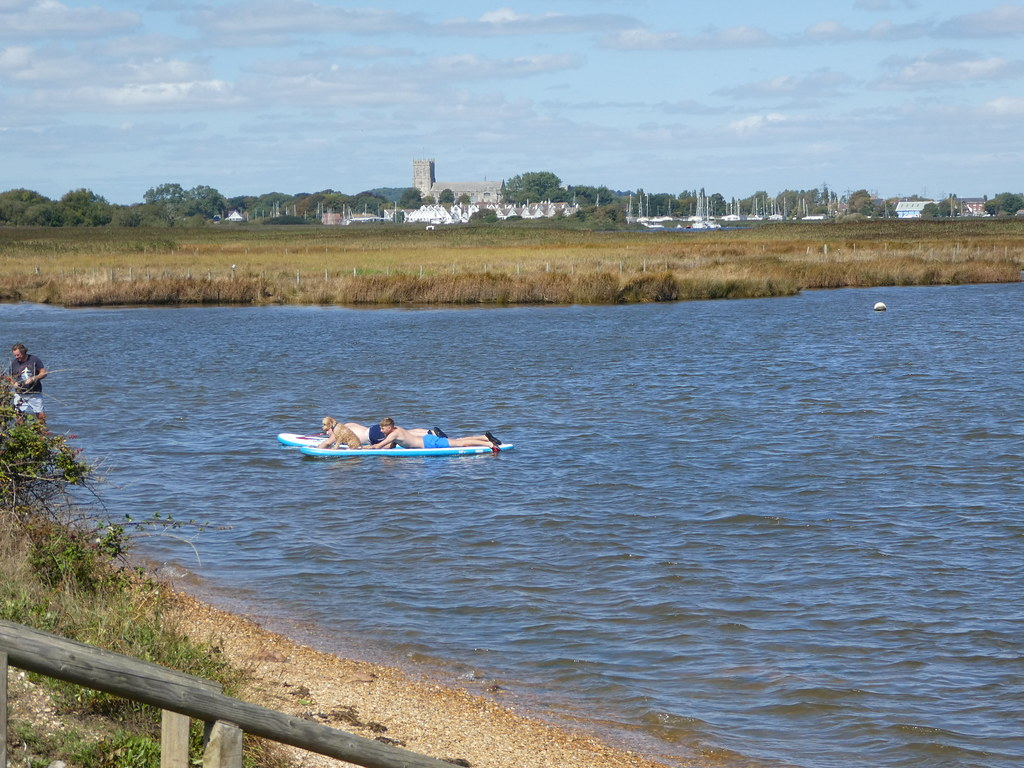 Dog paddle boarding in Christchurch Harbour