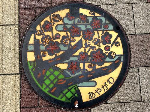 Ayagawa Kagawa, manhole cover 2 (香川県綾川町のマンホール2)