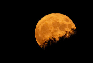 Harvest Moon - October 1 2020 | by Kevin M. Gill