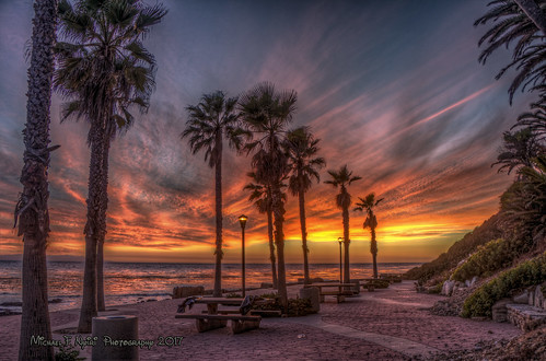 whitepointbeach royalpalmsbeach sanpedro california southerncalifornia palmtrees sunset sky cloudscapes