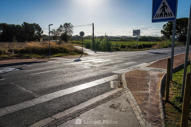 Cruzando la carretera de Vilobí del Penedès