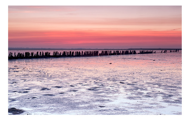 Sunrise / Moddergat / Friesland