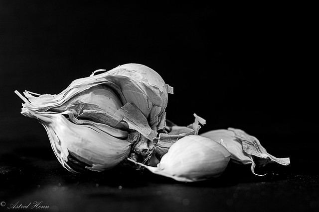 Knoblauch  garlic (in explore)