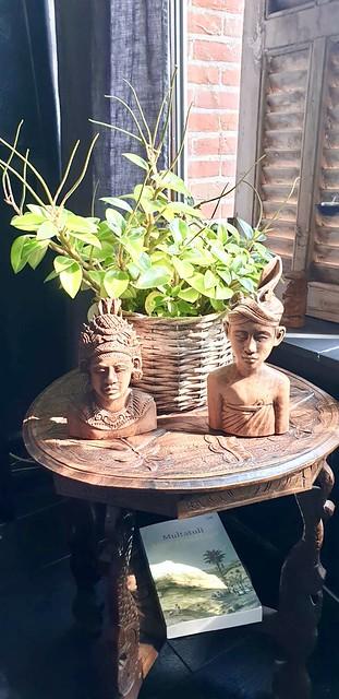 Indonesische beelden plant in mand bijzettafel