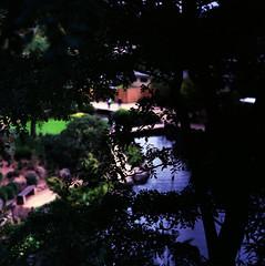 Japanischer Garten.20